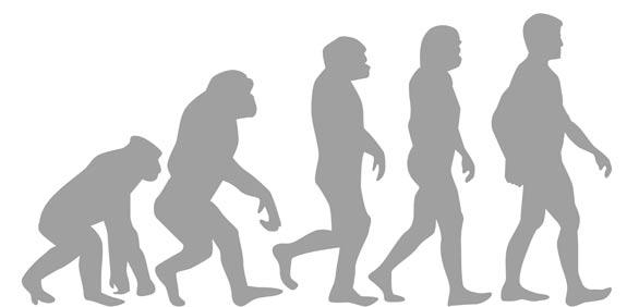 אבולוציה / מאייר: Shutterstock.com. א.ס.א.פ קראייטיב